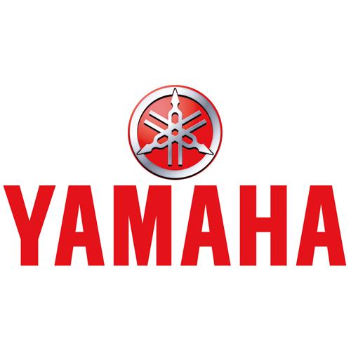Yamaha Spoke Kit